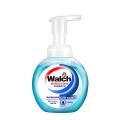 威露士 - 泡沫洗手液(健康清香) 300ml