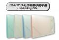DATA BANK CA4/12 12格A4透明磨砂風琴袋